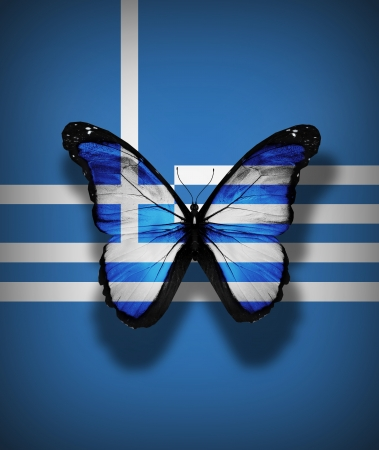 the greek flag: Greek flag butterfly, isolated on flag background