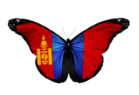 mongolian: Mongolian flag butterfly flying, isolated on white background