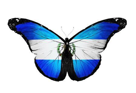 bandera de guatemala: Guatemala bandera mariposa, aislado en fondo blanco