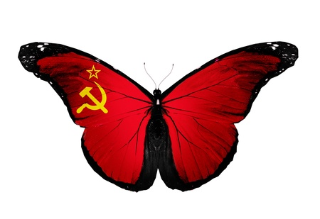 soviet union: Soviet Union flag butterfly, isolated on white background