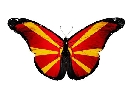 Macedonia flag butterfly, isolated on white background Stock Photo