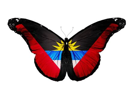 antigua flag: Antigua and Barbuda flag butterfly, isolated on white background