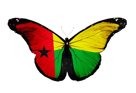 guinea bissau: Guinea Bissau flag butterfly, isolated on white background