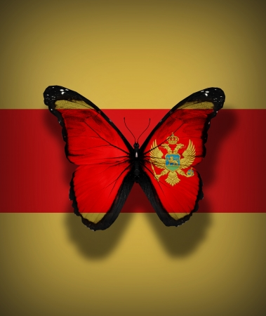Montenegro flag butterfly, isolated on flag background photo