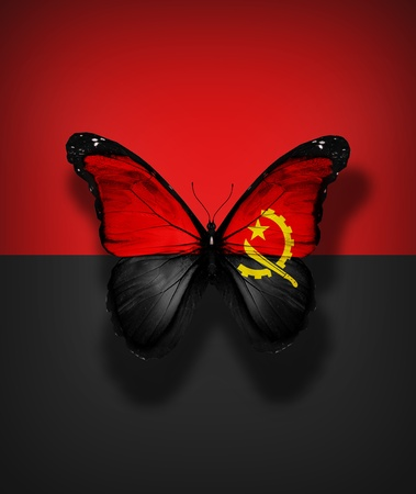 Angola flag butterfly, isolated on flag background Stock Photo