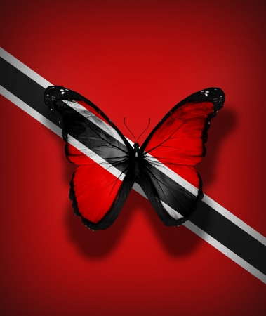 Trinidad and Tobago flag butterfly, isolated on flag background photo