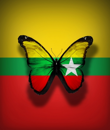 Burma flag butterfly, isolated on flag background photo