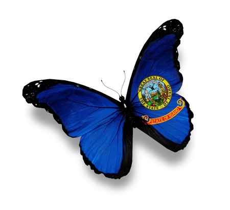Flag of Idaho butterfly, isolated on white