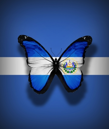 el salvador flag: El Salvador flag butterfly, isolated on flag background Stock Photo