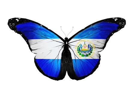 bandera de el salvador: El Salvador bandera de mariposa, aislado en fondo blanco Foto de archivo
