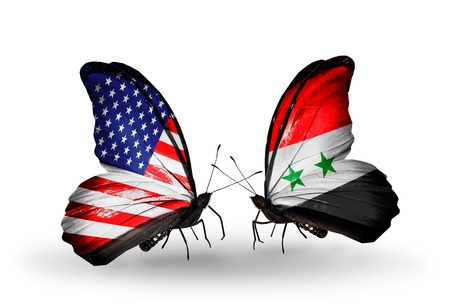 american butterflies: Two butterflies with flags on wings as symbol of relations USA and Syria