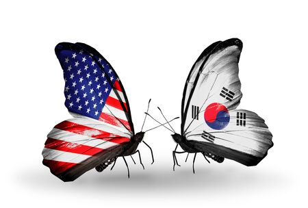 Two butterflies with flags on wings as symbol of relations USA and South Korea photo
