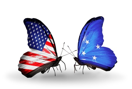 american butterflies: Two butterflies with flags on wings as symbol of relations USA and Micronesia