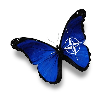 north atlantic treaty organization: Flag of NATO butterfly, isolated on white