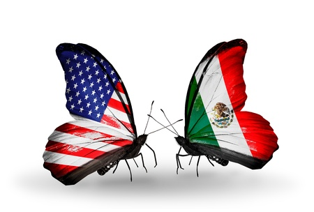 american butterflies: Two butterflies with flags on wings as symbol of relations USA and Mexico Stock Photo
