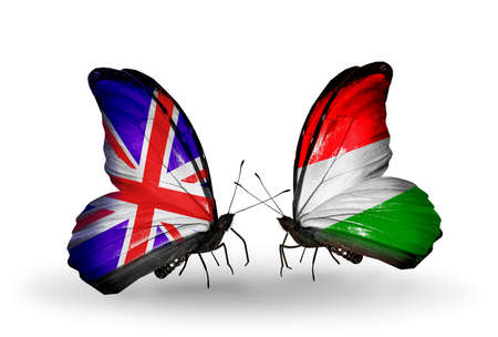 Two butterflies with flags on wings as symbol of relations UK and Hungary photo