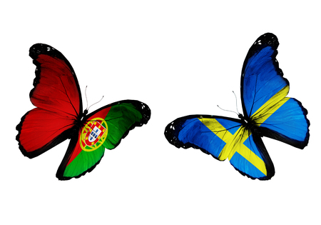 Concept - two butterflies with Portuguese and Swedish flags flying, like two football teams playing photo