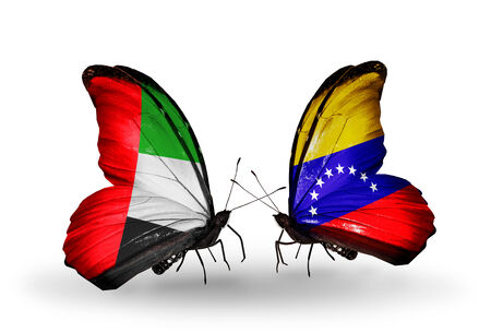 �rabe: Dos mariposas con banderas en las alas como s�mbolo de las relaciones de Emiratos �rabes Unidos y Venezuela Foto de archivo
