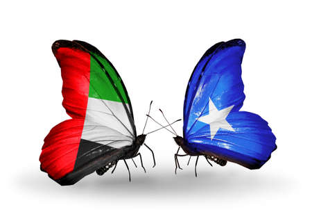 Two butterflies with flags on wings as symbol of relations UAE and Somalia photo
