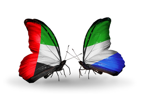 Two butterflies with flags on wings as symbol of relations UAE and Sierra Leone photo