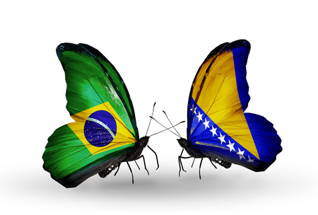 Two butterflies with flags on wings as symbol of relations Brazil and  Bosnia and Herzegovina photo