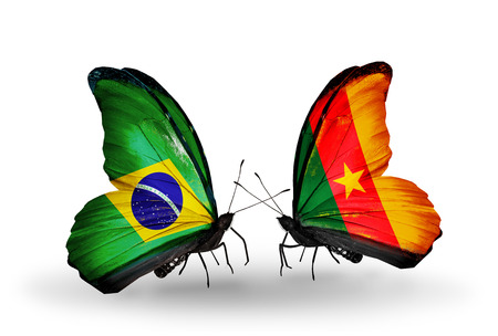 Two butterflies with flags on wings as symbol of relations Brazil and Cameroon Stock Photo