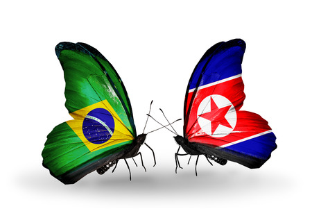 Two butterflies with flags on wings as symbol of relations Brazil and North Korea
