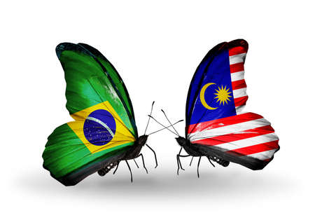 Two butterflies with flags on wings as symbol of relations Brazil and Malaysia photo