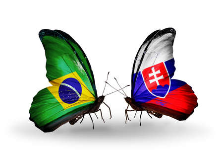 Two butterflies with flags on wings as symbol of relations Brazil and Slovakia photo