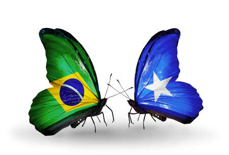 Two butterflies with flags on wings as symbol of relations Brazil and  Somalia photo