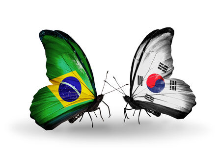 Two butterflies with flags on wings as symbol of relations Brazil and South Korea photo