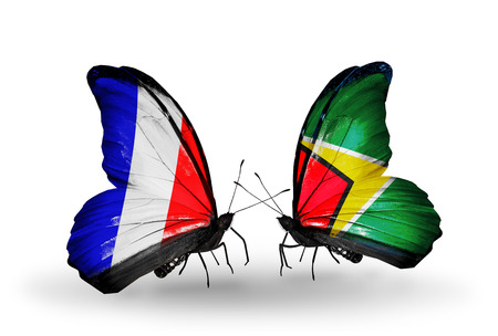 as: Two butterflies with flags on wings as symbol of relations France and Guyana