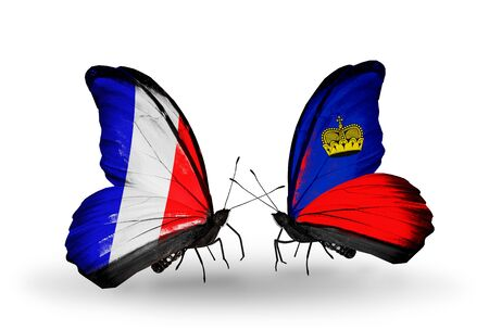 Two butterflies with flags on wings as symbol of relations France and Liechtenstein photo