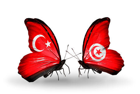 Two butterflies with flags on wings as symbol of relations Turkey and Tunisia photo