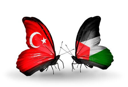 Two butterflies with flags on wings as symbol of relations Turkey and Palestine photo