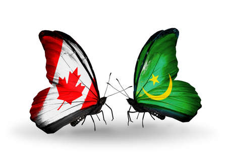 Two butterflies with flags on wings as symbol of relations Canada and Mauritania photo