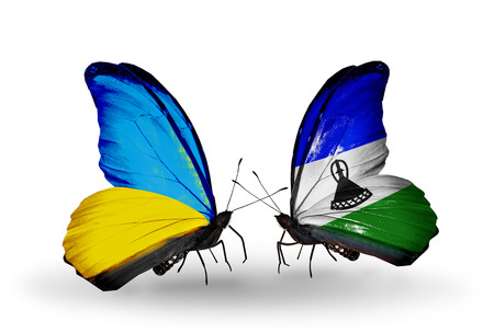 Two butterflies with flags on wings as symbol of relations Ukraine and Lesotho photo