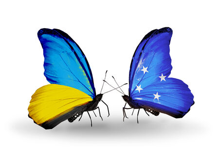 Two butterflies with flags on wings as symbol of relations Ukraine and Micronesia photo