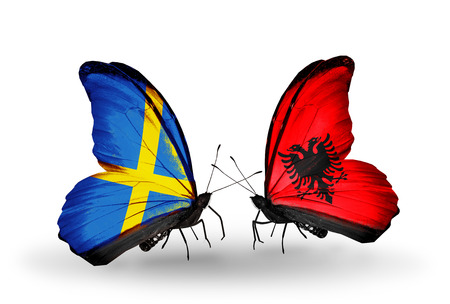 Two butterflies with flags on wings as symbol of relations Sweden and Albania photo
