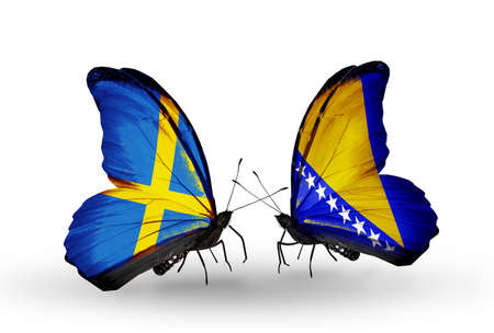 Two butterflies with flags on wings as symbol of relations Sweden and Bosnia and Herzegovina photo