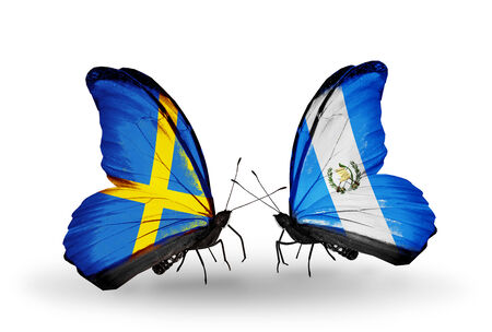 Two butterflies with flags on wings as symbol of relations Sweden and Guatemala photo