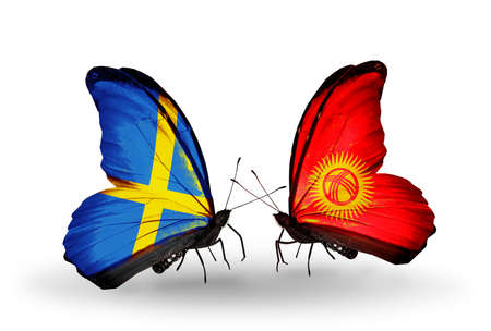 Two butterflies with flags on wings as symbol of relations Sweden and Kirghiz photo