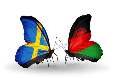 Two butterflies with flags on wings as symbol of relations Sweden and Malawi photo