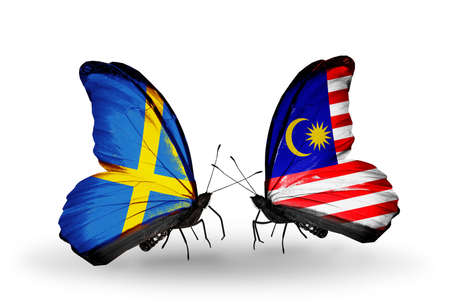 Two butterflies with flags on wings as symbol of relations Sweden and Malaysia photo