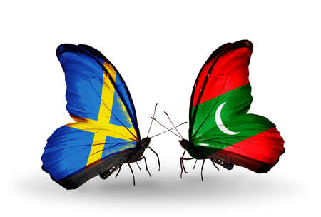 Two butterflies with flags on wings as symbol of relations Sweden and Maldives photo