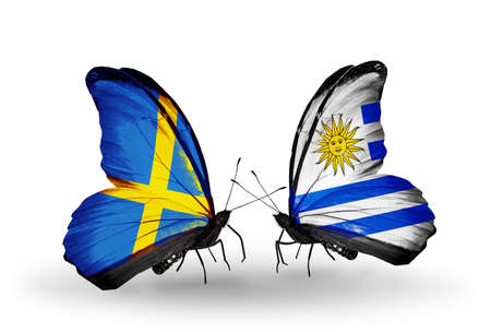 Two butterflies with flags on wings as symbol of relations Sweden and Uruguay photo