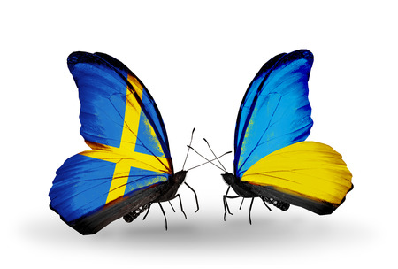 Two butterflies with flags on wings as symbol of relations Sweden and Ukraine photo