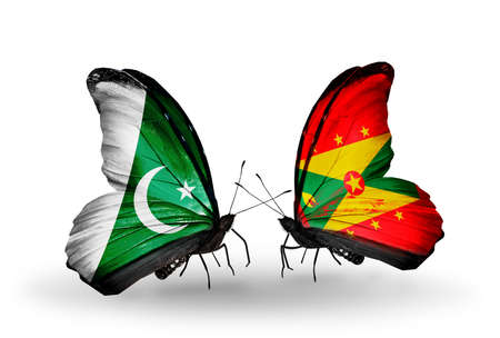 Two butterflies with flags on wings as symbol of relations Pakistan and Grenada photo