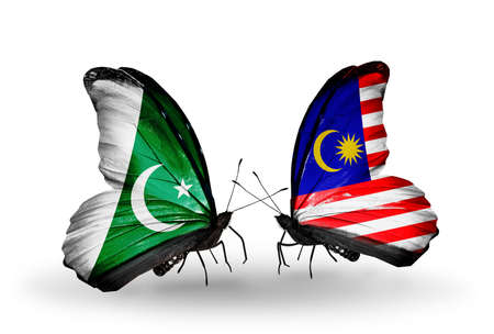 Two butterflies with flags on wings as symbol of relations Pakistan and Malaysia photo