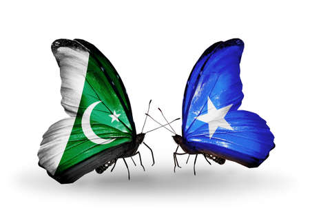 Two butterflies with flags on wings as symbol of relations Pakistan and Somalia